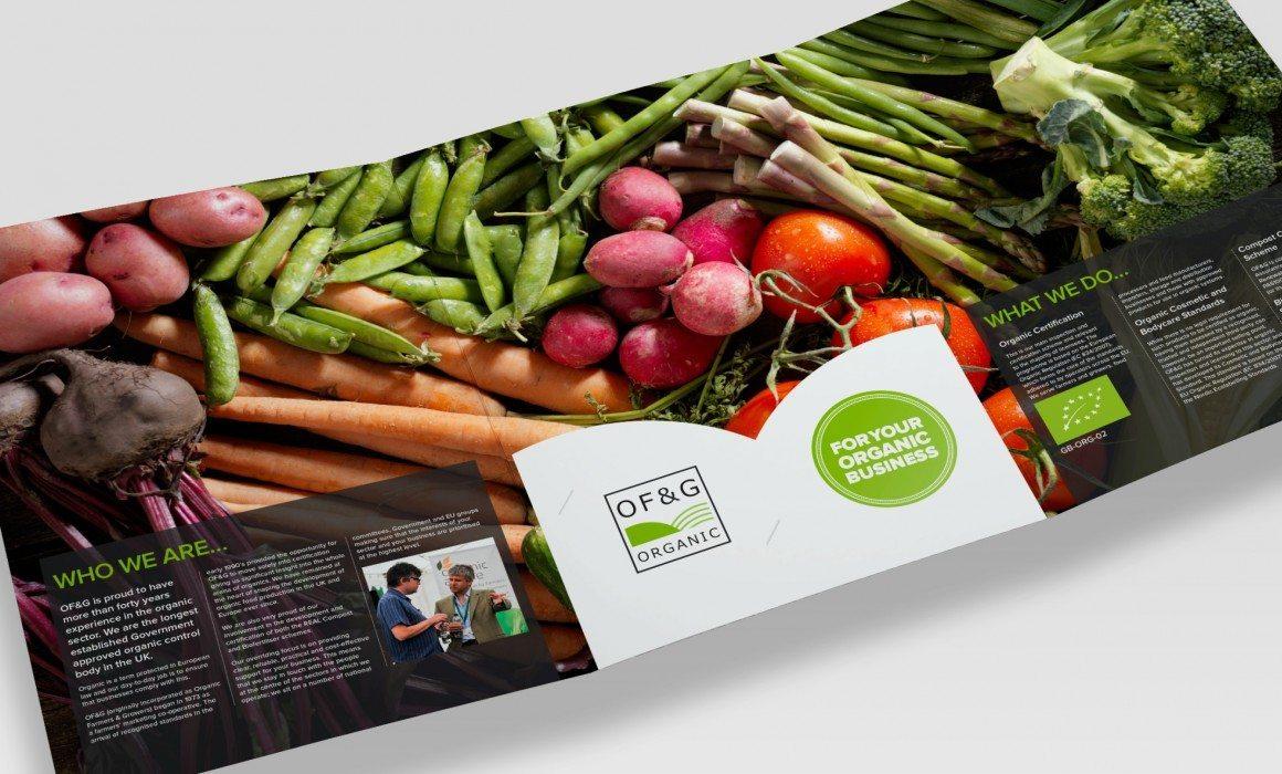 OF&G folder design